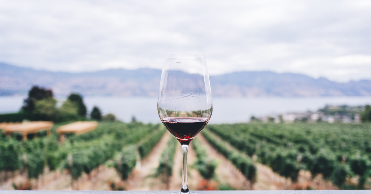 What to Expect on a Kelowna Wine Tour